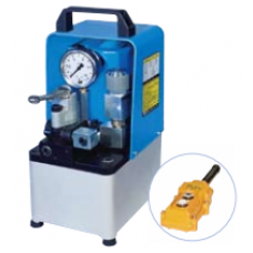 Double Acting Electric Pumps